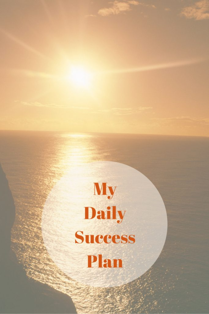 my plan for success Achieving success in today's world has become less chance and more hard work  you hear more stories every day about people who were.
